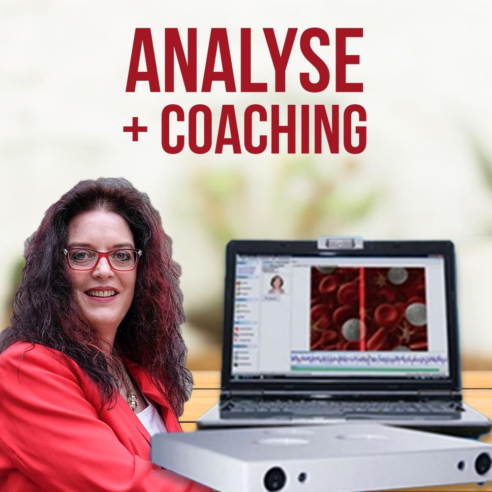 Bild Analyse + Coaching